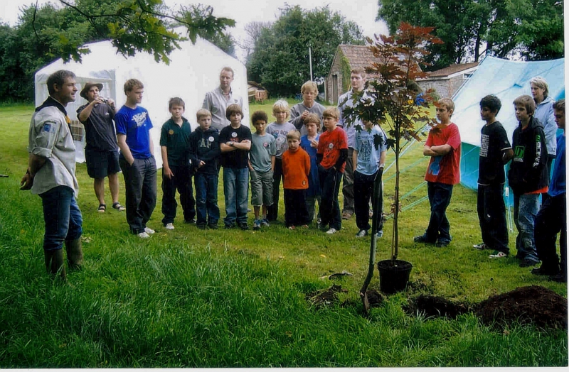 2008 centenery tree